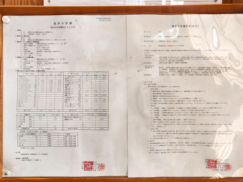 野沢温泉 大湯 温泉分析書