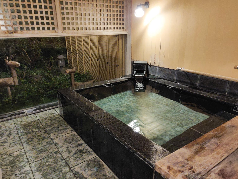 中川温泉信玄館 丹青の湯浴槽