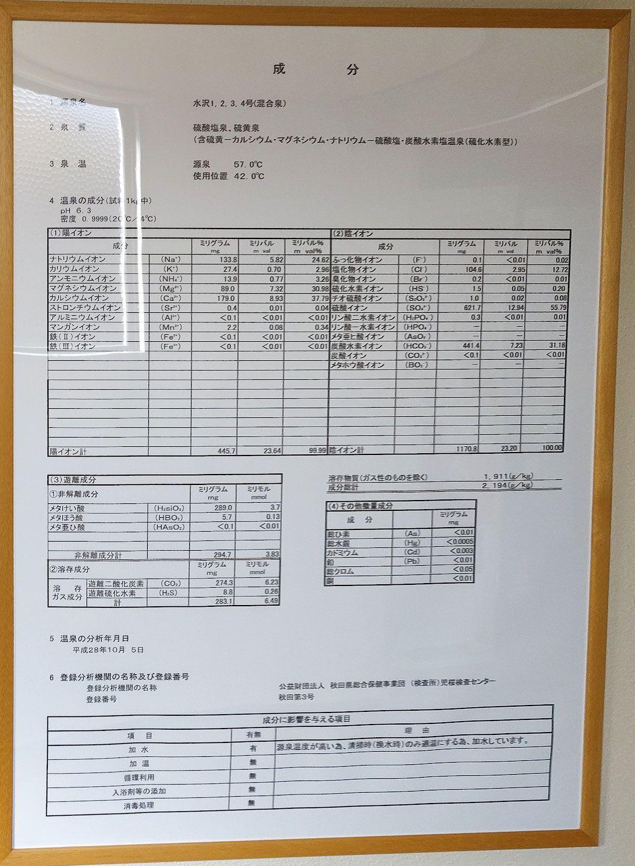 水沢山荘 温泉分析書