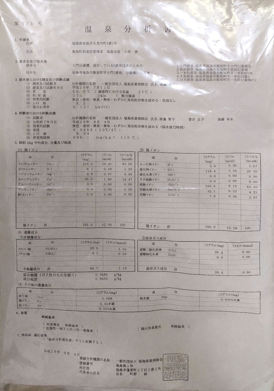 飯坂温泉 十綱の湯 温泉分析書