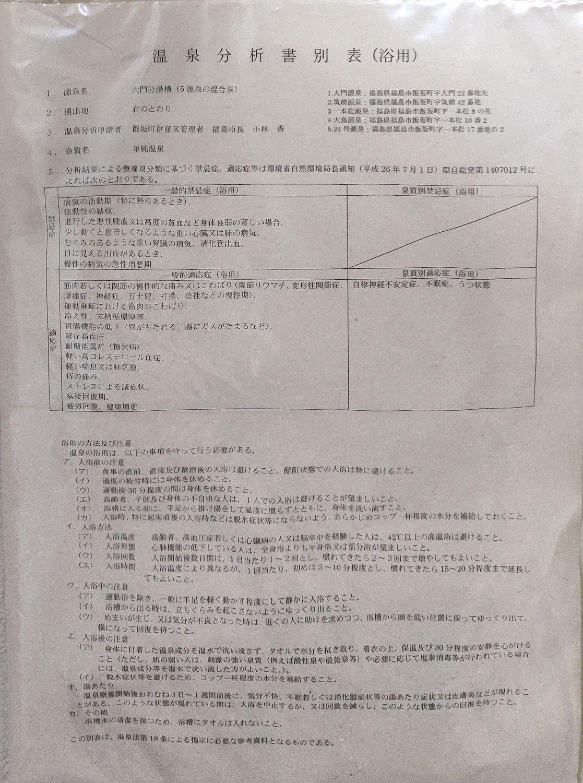 飯坂温泉 十綱の湯 温泉分析書別表