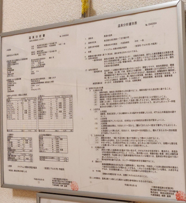 ゆ〜シティー蒲田 温泉分析書