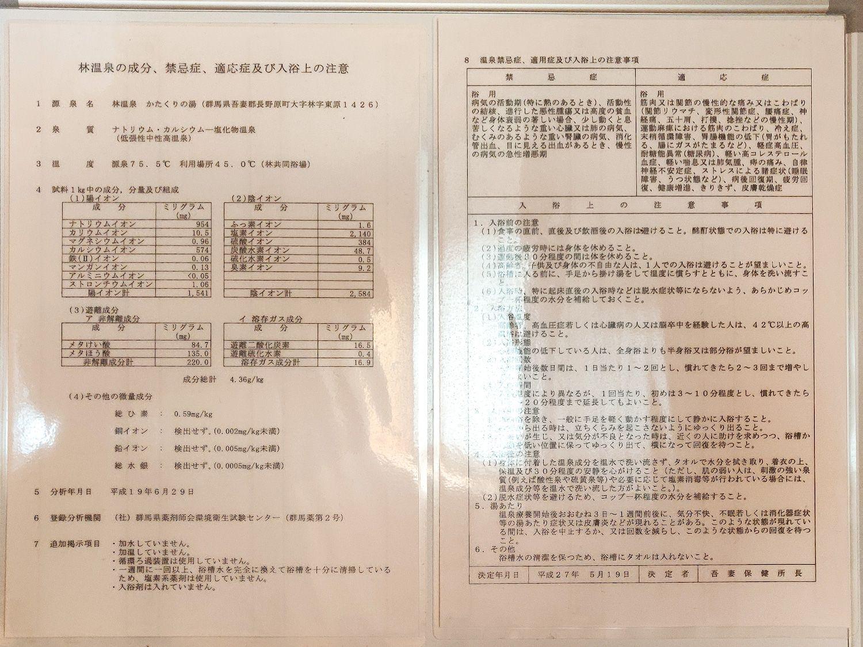 林温泉 温泉分析書
