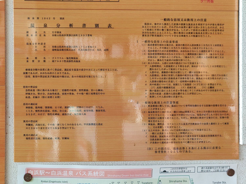 白浜温泉 行幸源泉 温泉分析書別表