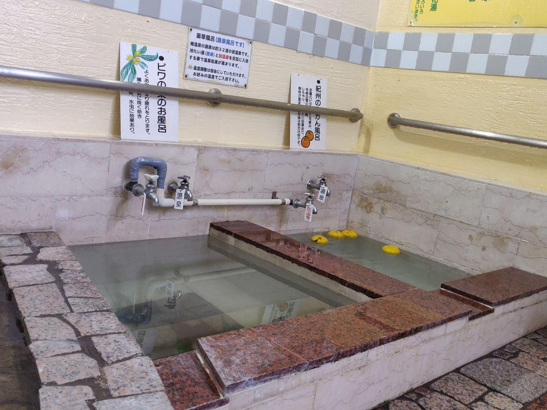 椿温泉 しらさぎ 夜の薬草風呂
