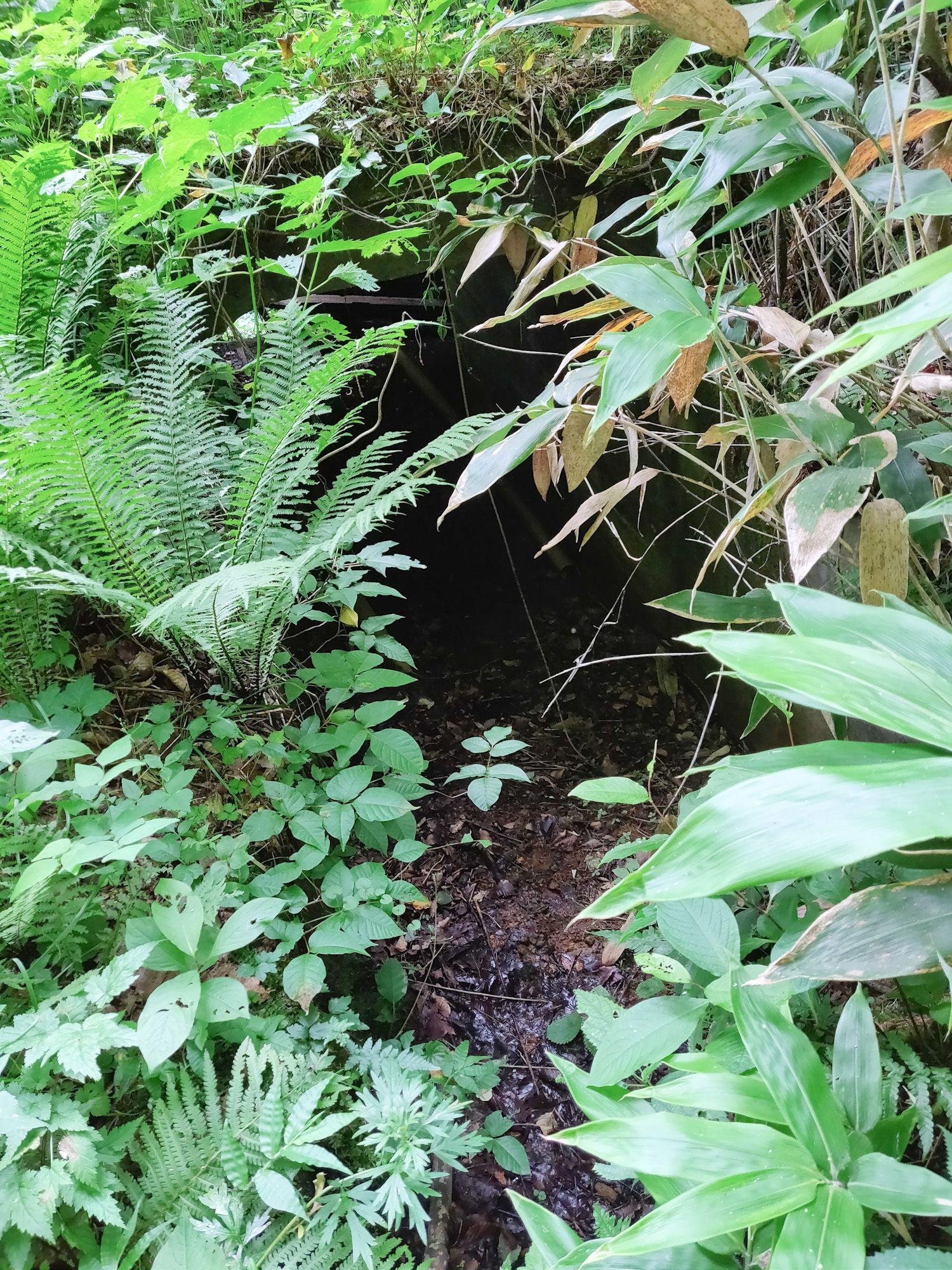 神瀧温泉 地下施設