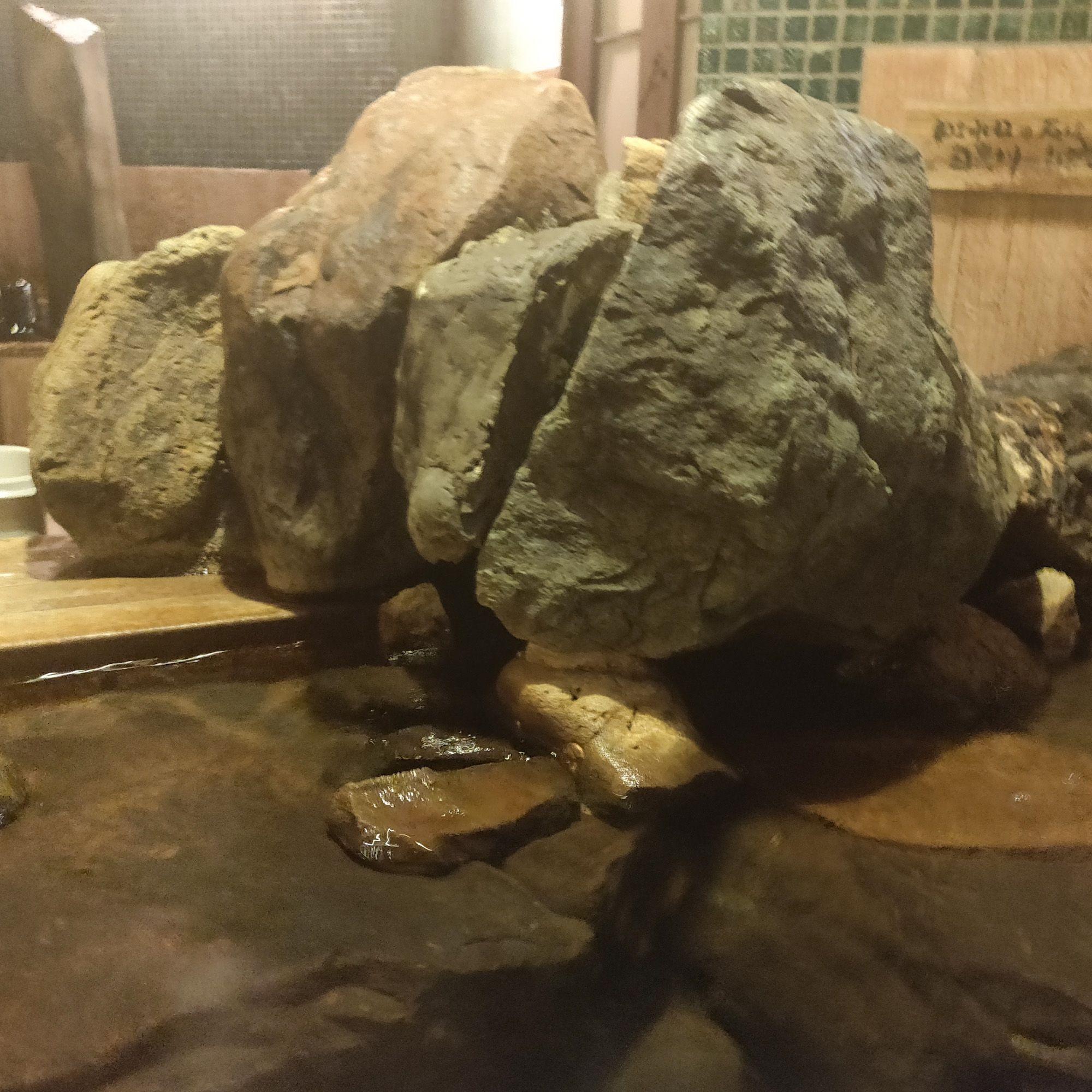 ドーミーイン紀州の湯 湯口