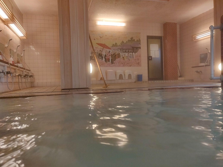 熱塩温泉 ふじや 壁画風呂 入浴中目線