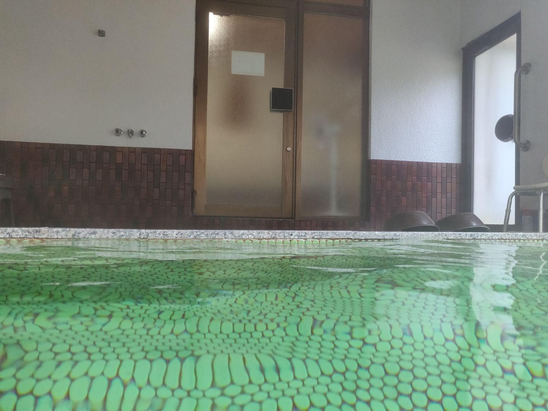 湯野上温泉 星乃井 内湯入浴中目線