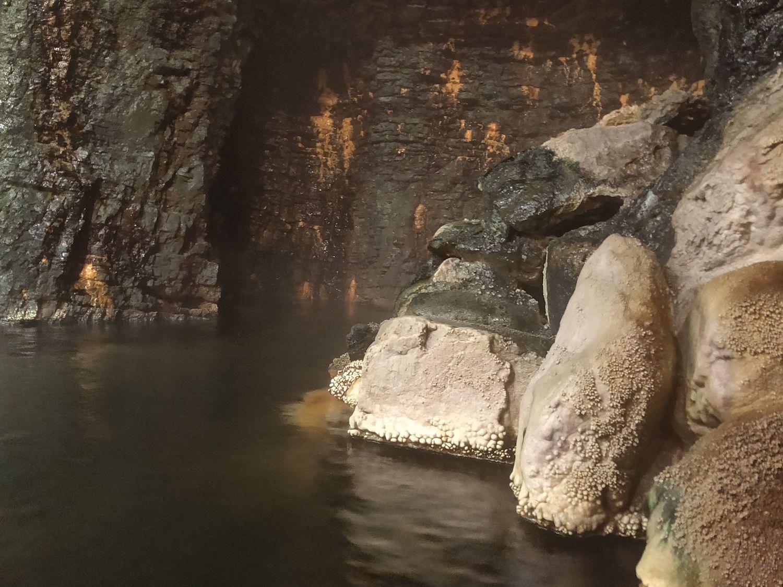洞窟風呂 浴室