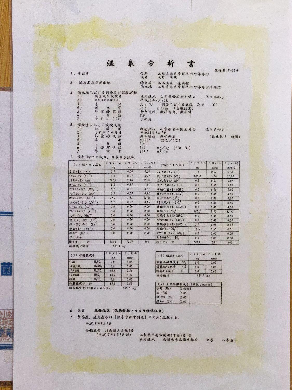 温泉分析書 (平成19年)