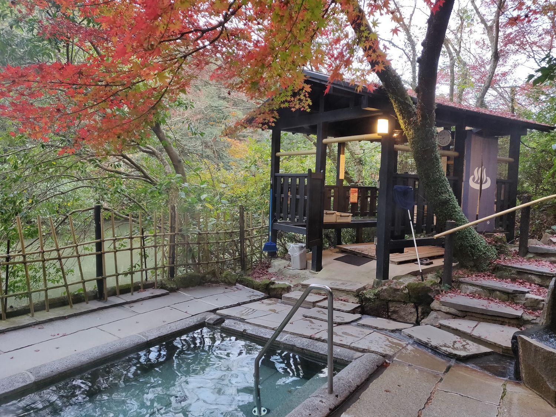 露天風呂男湯 池の景色